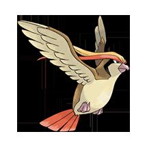 Pidgeot imagen