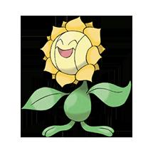 Sunflora imagen