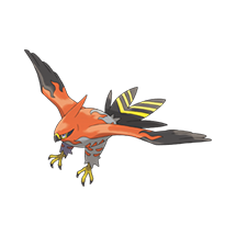 Talonflame imagen